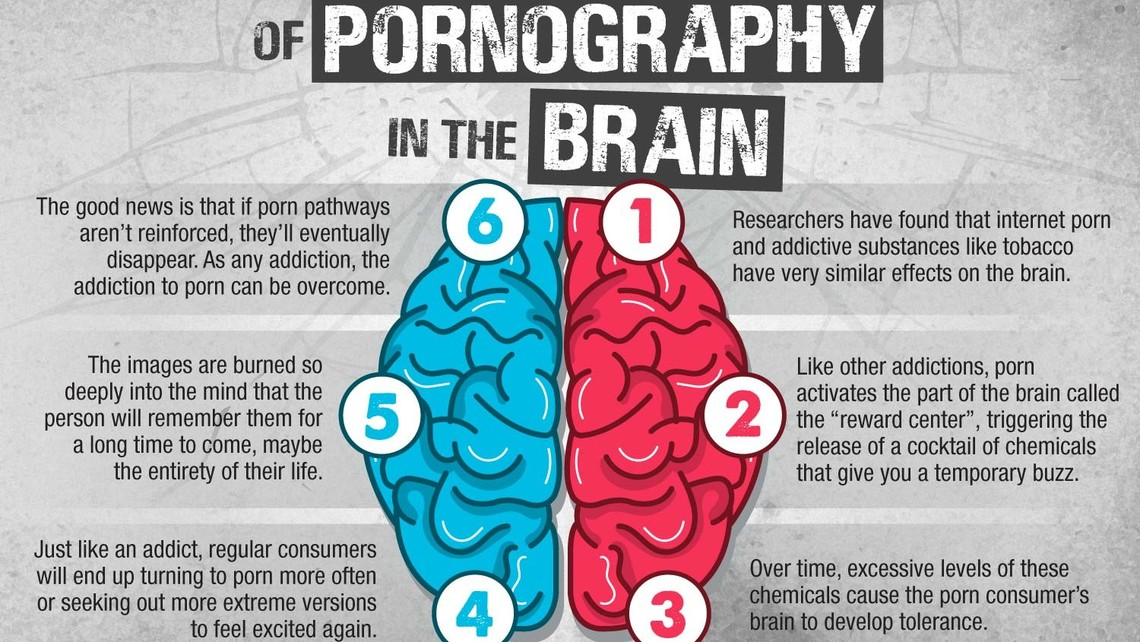 Infographic Effects Of Pornography In The Brain